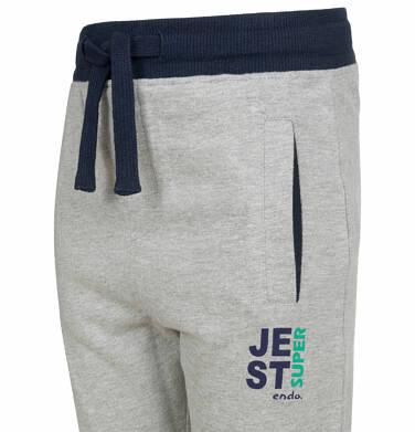 Endo - Spodnie dresowe dla chłopca, kontrastowe ściągacze, szare, 2-8 lat C03K025_1,2