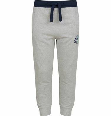 Endo - Spodnie dresowe dla chłopca, kontrastowe ściągacze, szare, 9-13 lat C03K525_1