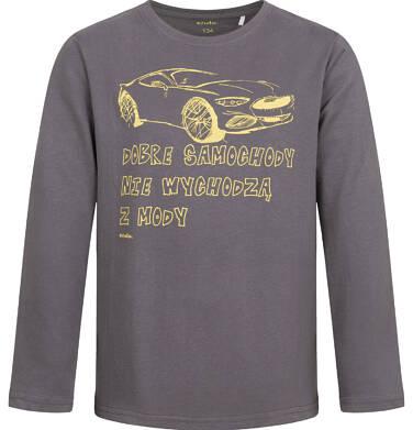 Endo - T-shirt z długim rękawem dla chłopca, z samochodem, szary, 9-13 lat C04G183_2 28