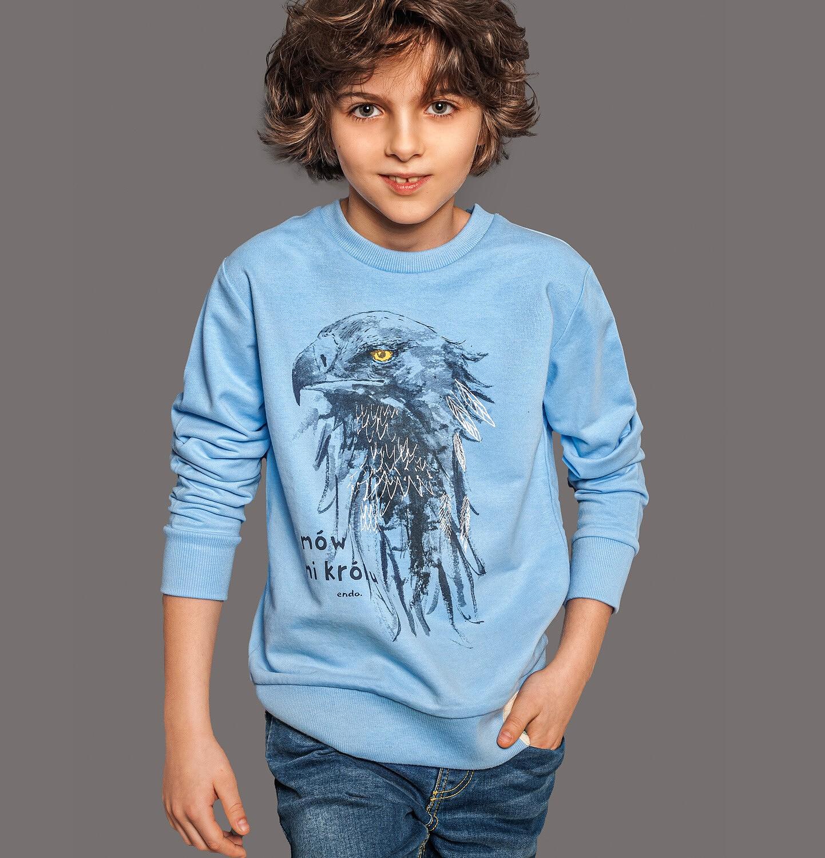 Endo - Bluza dla chłopca, z orłem, niebieska, 2-8 lat C05C011_1