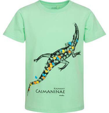 Endo - T shirt z krótkim rękawem dla chłopca, z kajmanem, zielony, 2-8 lat C05G156_2 5