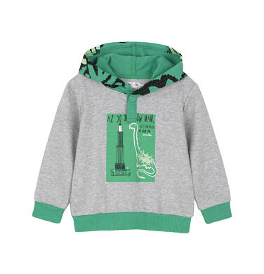 Bluza z kapturem dla dziecka 0-3 lata N91C013_1