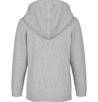 Endo - Sweter rozpinany z kapturem dla chłopca 9-13 lat C91B502_1,2