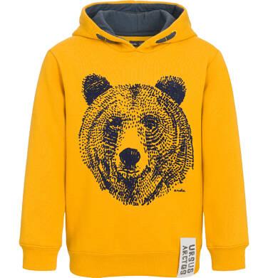 Endo - Bluza z kapturem dla chłopca, z niedźwiedziem, ciemnomusztardowa, 9-13 lat C92C523_1