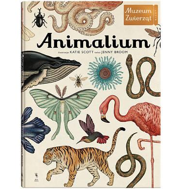 Endo - Animalium BK04010_1 139