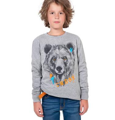 Endo - Bluza dla chłopca, z misiem, szara, 9-13 lat C04C032_1 18