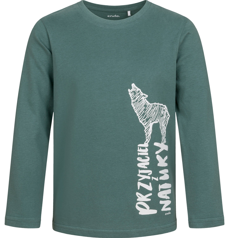 Endo - T-shirt z długim rękawem dla chłopca, z wilkiem, zielony, 9-13 lat C04G067_1