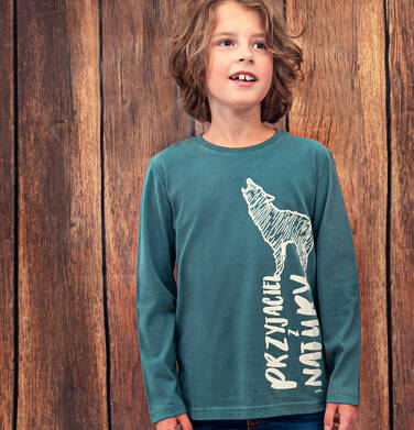 Endo - T-shirt z długim rękawem dla chłopca, z wilkiem, zielony, 9-13 lat C04G067_1 14
