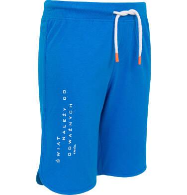 Endo - Krótkie spodenki dla chłopca, z napisem na nogawce, niebieskie, 9-13 lat C06K003_3 46