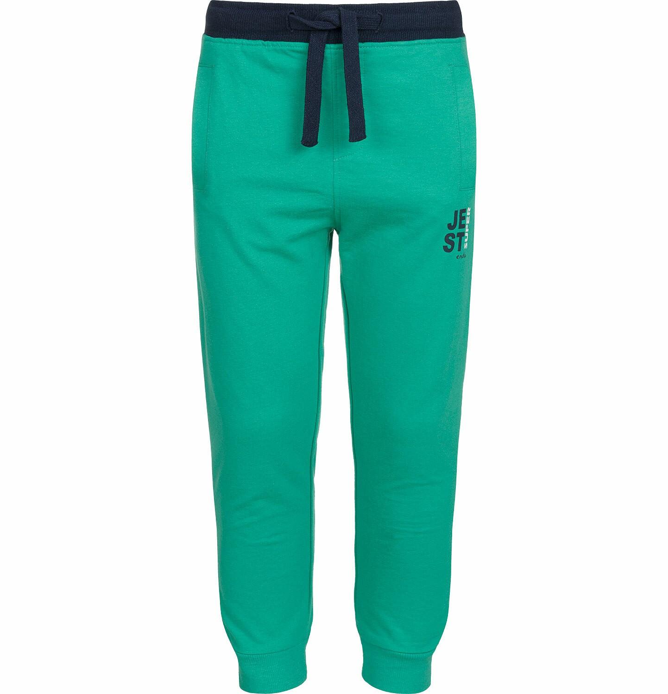 Endo - Spodnie dresowe dla chłopca, kontrastowe ściągacze, zielone, 9-13 lat C03K525_4