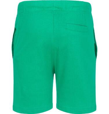 Endo - Krótkie spodenki dla chłopca, zielone, 2-8 lat C06K014_3 12