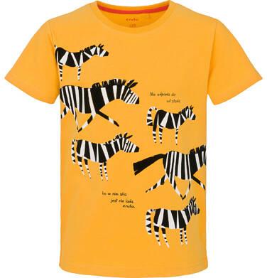 Endo - T-shirt dla chłopca 3-8 lat C91G136_1