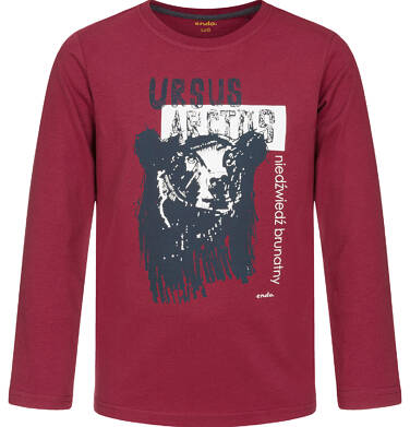 Endo - T-shirt z długim rękawem dla chłopca, z niedźwiedziem, ciemnowiśniowy, 9-13 lat C92G544_1