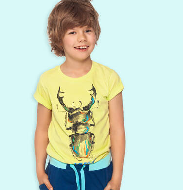 Endo - T-shirt z krótkim rękawem dla chłopca, z chrząszczem, żółty, 9-13 lat C06G085_1 100