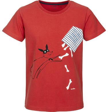 Endo - T-shirt z krótkim rękawem dla chłopca 9-13 lat C91G545_1