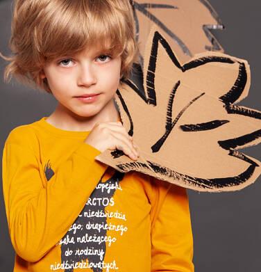 Endo - T-shirt z długim rękawem dla chłopca 3-8 lat C92G047_1
