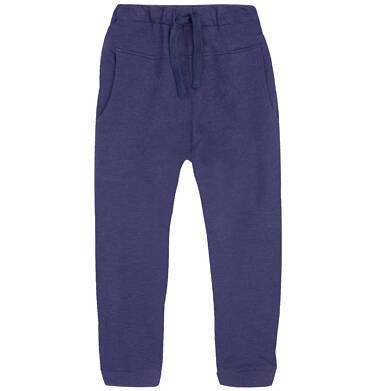 Endo - Spodnie dresowe dla chłopca 3-8 lat C72K014_1