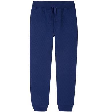 Endo - Spodnie dresowe dla chłopca 3-8 lat C72K012_1