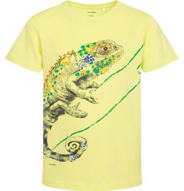 Endo - T-shirt z krótkim rękawem dla chłopca, z kameleonem, żółty, 9-13 lat C06G086_2 98