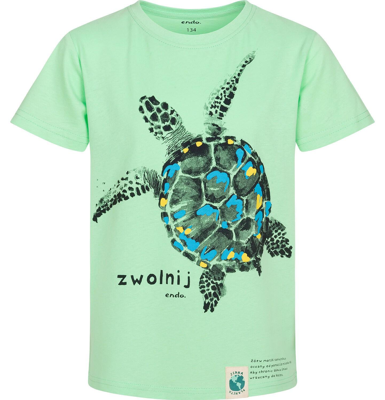Endo - T-shirt z krótkim rękawem dla chłopca, z żółwiem morskim, zielony, 9-13 lat C05G166_3