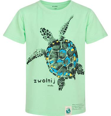 Endo - T-shirt z krótkim rękawem dla chłopca, z żółwiem morskim, zielony, 9-13 lat C05G166_3 209