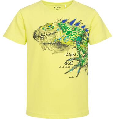 Endo - T-shirt z krótkim rękawem dla chłopca, z legwanem, żółty, 9-13 lat C06G091_2 97